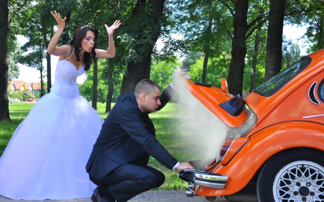 Hire a Limo Bus for Spring Weddings