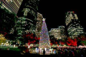 Houston Holiday Travel